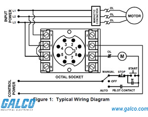 8 pin relay wiring diagram  | elsalvadorla.org